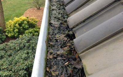 Waarom u de dakgoot moet schoonmaken